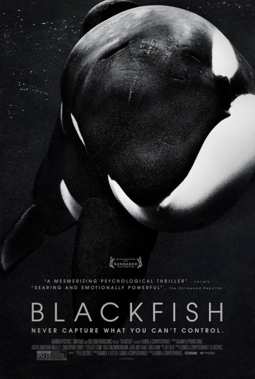 Blackfish-916683539-large