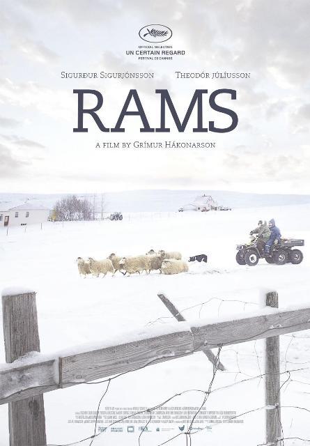 Rams_El_valle_de_los_carneros-820102054-large