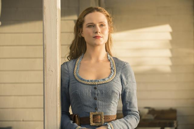 westworld_tv_series-708077951-large