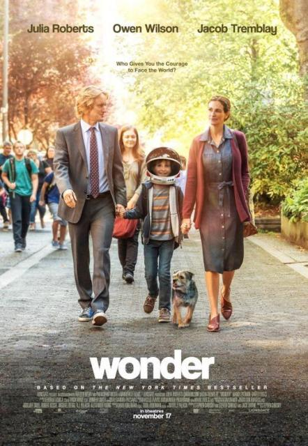 wonder-474297056-large
