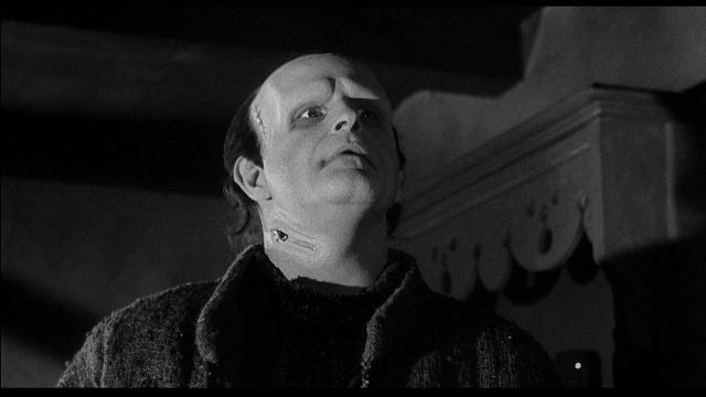young_frankenstein-111302530-large - copia