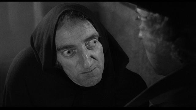 young_frankenstein-495985840-large - copia