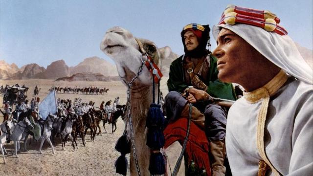 camellos lawrence de arabia