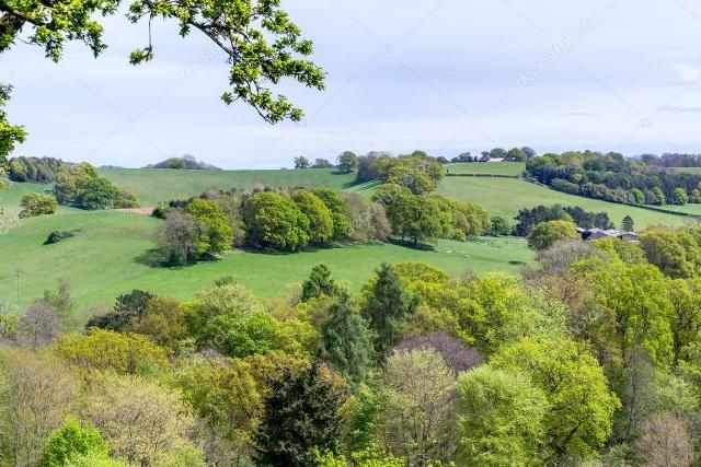las campiñas de Surrey, en Inglaterra