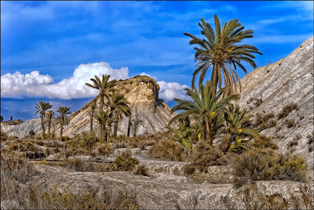 rambla del Cautivo, en el desierto de Tabernas